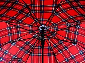 چتر جدید