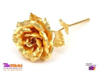 گل رز طلایی پایه دار
