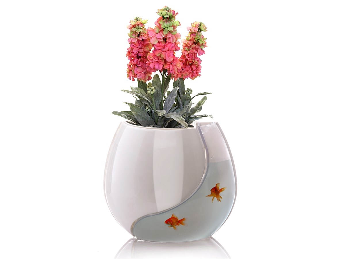 گلدان آکواریومی