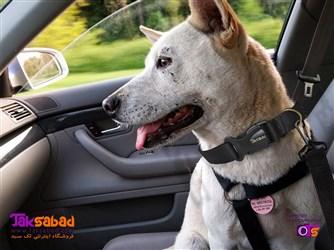 کمربند ماشین سگ